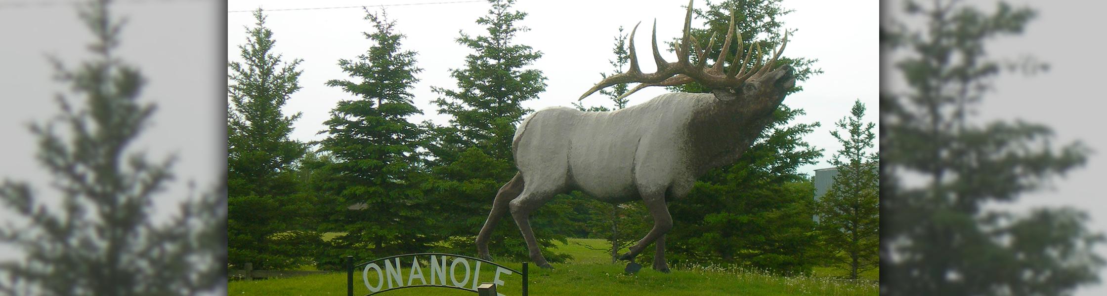 The Elk in Onanole, Manitoba