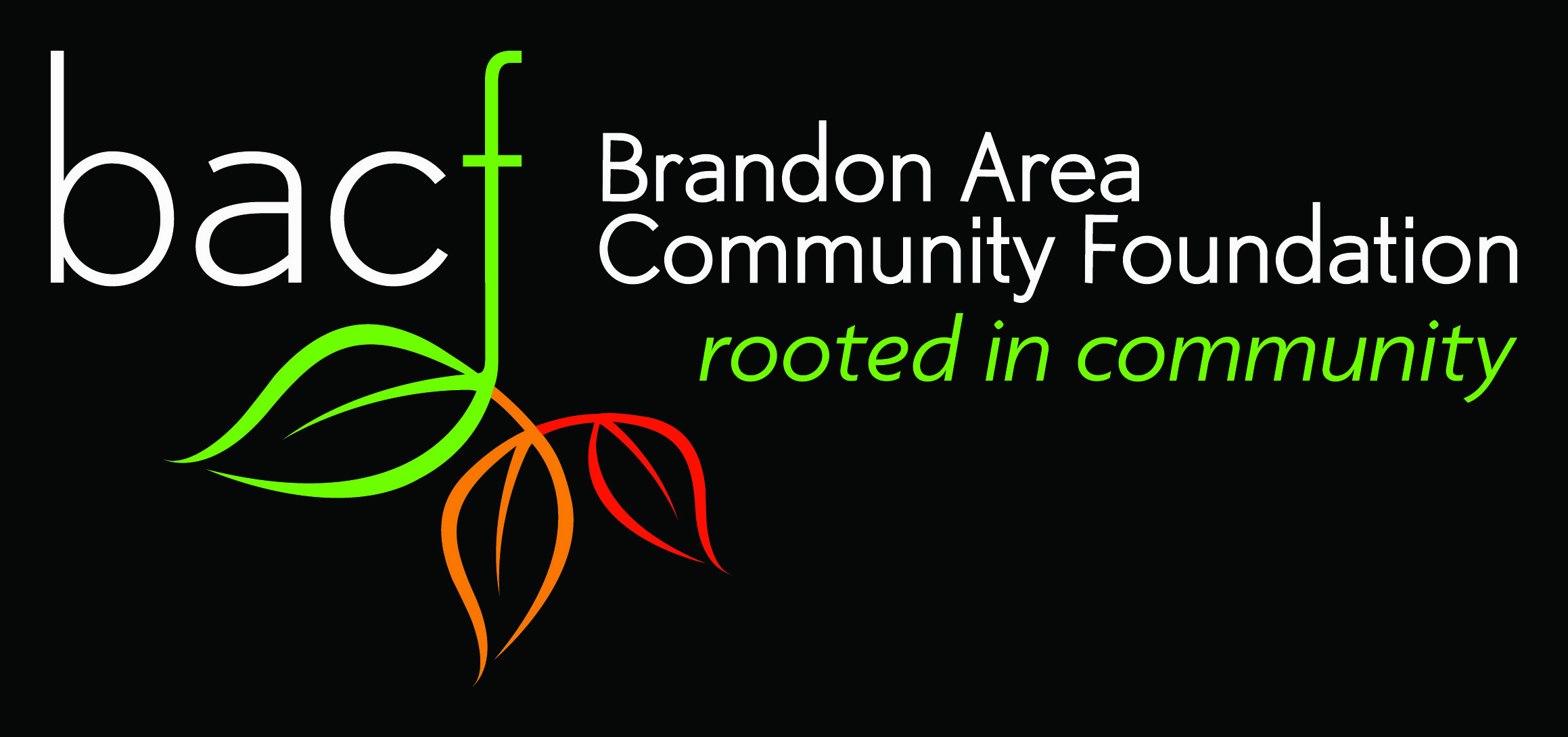Image result for brandon area community foundation